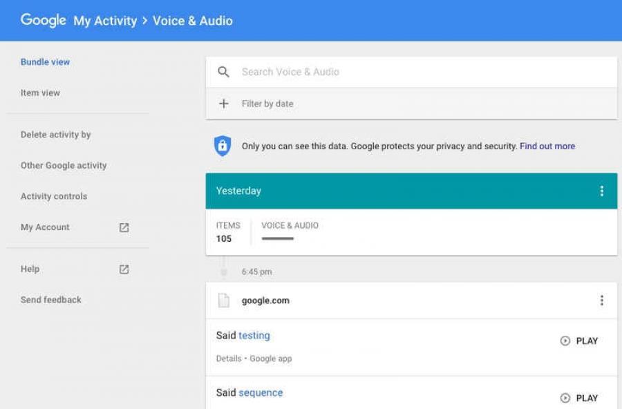 How to Delete Google Voice Search History   Pritam Danve